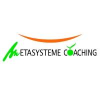 metasysteme